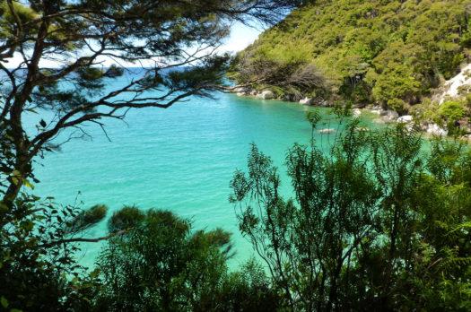 Backpacken in Nieuw Zeeland? Zorg dat je ook naar Golden Bay gaat