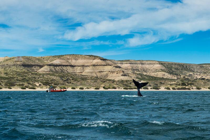 patagonie bezienswaardigheden