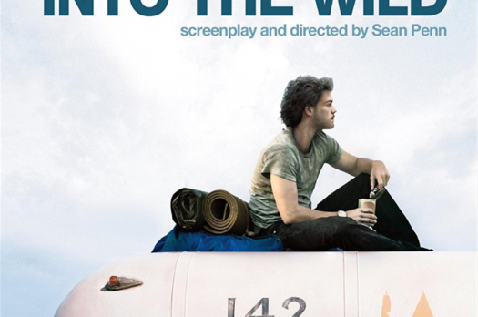 Top 10 reisfilms: Into the wild