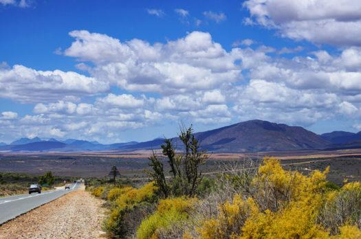5 tips om te doen in Zuid-Afrika