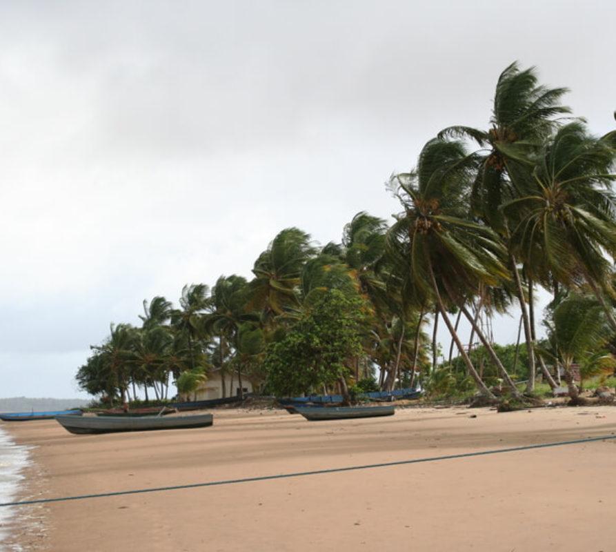 Highlights en bezienswaardigheden van Suriname