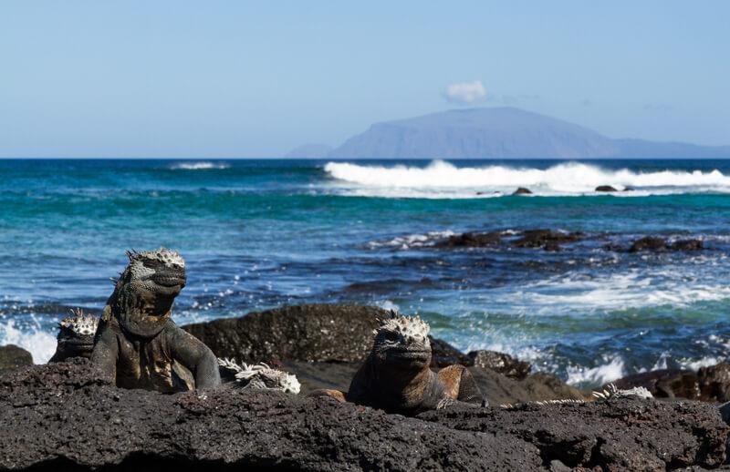 galapagos eilanden tips