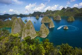 Reizen naar West Papoea