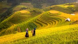 mooiste bezienswaardigheden vietnam