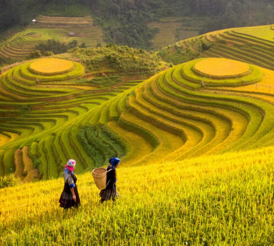 Reizen in Vietnam? Wat zijn de mooiste bezienswaardigheden van Vietnam?