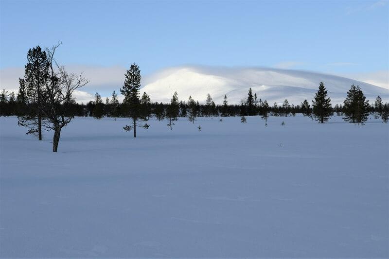 skieen in zweden